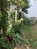 Hidden-Garden-4